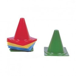 LOT DE 12 PLOTS STANDARDS 18 CM
